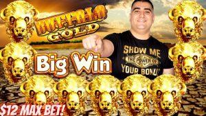 Buffalo Au Slot Machine nunui WIN   Pelikani Mīkini Kīwī Pelican nui WIN   Pāʻani Pāʻani Ola Ma ka bonus casino!