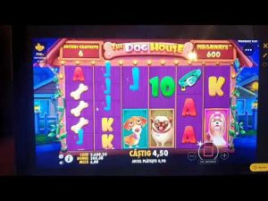 Canis familiaris House Megaways Princess casino bonus specială large WIN