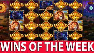 Streamers Biggest Wins – Online casino bonus Community WILD WIN