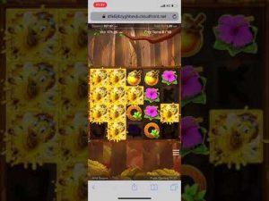 Wild swarm £1 stake large win ? Online casino bonus Mobile