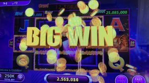casino bonus slots!  large WIN!  High Bet !