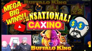 ii Super Nice Bonuses!! Mega large Wins From Buffalo Rex!!