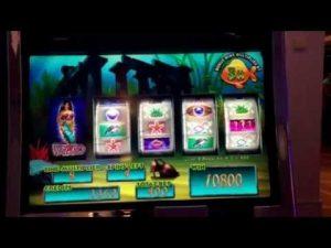 large WIN on the atomic number 79 Fish slot machine-$687reward.casino bonus on Breakaway Norwegian Cruise line
