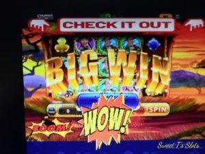 CHUMBA casino bonus SAFARIE SELFIE large WIN