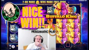 Nice Win From Buffalo manlike somebody monarch Slot!!
