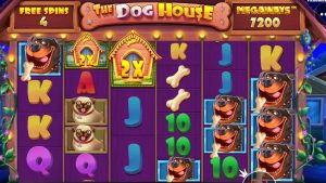 👑 The Canis familiaris House Megaways large Win 💰 A Slot yesteryear Pragmatic Play.