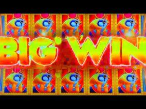 large WINS At Prairie Meadows casino bonus!
