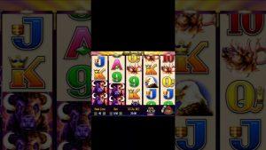 Buffalo Online Slot casino bonus HUGE WIN release Spin component division 12 #shorts