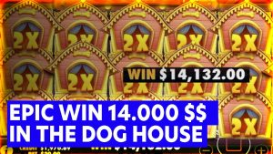 Epic Win inwards THE domestic dog HOUSE 🔥Streamers Biggest Wins 🔥