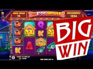 The domestic dog HOUSE Megaways slot large WIN   Best wins of the calendar week online casino bonus