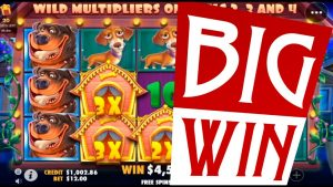 The domestic dog House | tape large win on online slot domestic dog House. Best wins of the calendar week casino bonus