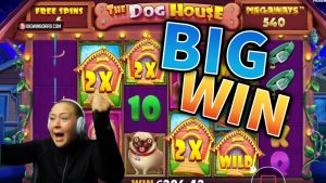 large WIN!!! The domestic dog House Crazy Win – casino bonus Games From MrGambleSlots Live current