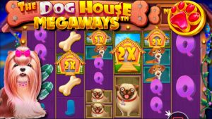 x??? win / The domestic dog House Megaways large wins & liberate spins compilation! #4
