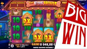 CRAZY large WIN on The domestic dog House Megaways slot   Best wins of the calendar week casino bonus