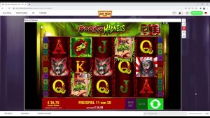 Casinotest Slot Wolf (novel Slot) volume of Madness large Win