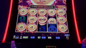 Dragon Link Panda Magic casino bonus Slots large win