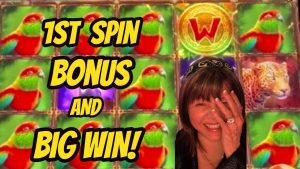 WOW! 1st spin-2nd spin & large Win Bonuses. I love Jungle Tower!
