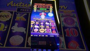 autumm satelite large win for little $ 3 bet HOLLYWOOD casino bonus Toledo ohio