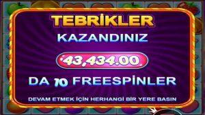 🎰FRUIT partido político grande WIN 43.430 TL💰 1809x Vurduk. Meyveleri topladık #fruitparty #pragmatic #bigwin