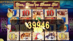 Buffalo Deluxe 💰large WIN💰 #casino bonus #slotman #buffalo