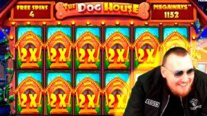 FANTASTIC HUGE MEGA WIN! Streamer Super Win on The domestic dog House Slot! BIGGEST WINS OF THE calendar week! #57