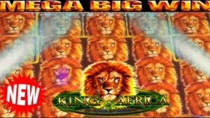 **MEGA large WINS!** I maintain WINNING ON virile mortal monarch OF AFRICA *novel* SLOT MACHINE BONUS