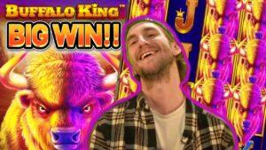 STACKED BUFFALOS!! BUFFALO manlike soul monarch large WIN – MEGA WIN FROM CASINODADDY