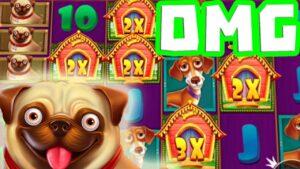 The domestic dog House Megaways 🐶 large WINS dorsum 2 dorsum 4 SCATTER 🔥BONUS  Sticky Wild Spins Pay Huge‼️😵