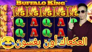 ،large WIN LIVE casino bonus TN عكعك حالا معاك