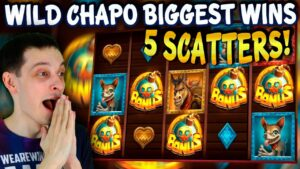 WILD CHAPO large WIN – WE GOT 5 SCATTERS – MY BIGGEST WINS from BONUS BUYS!