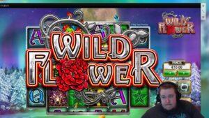 Wild bloom large WIN ★ Vihjeareena Twitch current