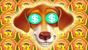 The domestic dog House Megaways 🐶 Mega large Wins 😱 Epic Multipliers Bonus Buys + Pefect Final Spin Bonus‼️