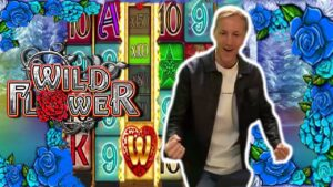 WILD bloom large WIN –  cherry SCATTER BONUS  – OUR BIGGEST WIN ON THIS SLOT FROM CASINODADDY current