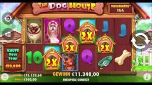 large Win on casino bonus Slot Canis familiaris house megaways slot 🤩🤩🤩