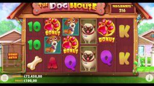 large Win on casino bonus Slot domestic dog House Megaways Slot 🤩🤩🤩