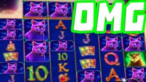 Madame Destiny Megaways 🔥 Slot MEGA large WIN 😱 CATS All the Way on a Huge Multiplier OMG‼️