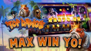 TOP DAWG$ 💰 €25,000 MEGA WIN! 🐕