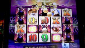 Buffalo Slot Bonus – large WIN – 80 cent Bet – over 1,000x bet