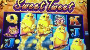 💥sweetness TWEETS💥large WINS 10Cent Denomination #slotman #casino bonus #droplink