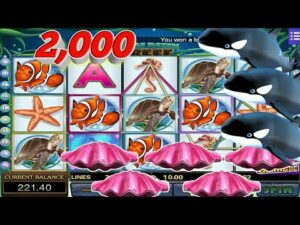 $$$ 2K (200 top-upward) Mega bigwin//Mega888 today//Dolphin Reef//Great blueish//release bonus game//SGP