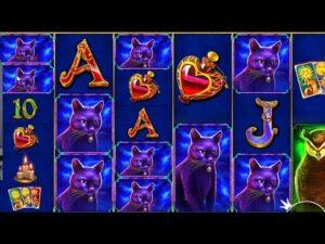 HIGHLIGHTS minute 💰 TOP MEGA WINS inward ONLINE casino bonus 💰 BEST SLOTS