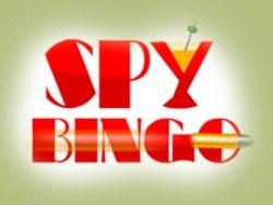 Spy Bingo ekran tasvirini