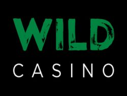Wild Casino skärmdump