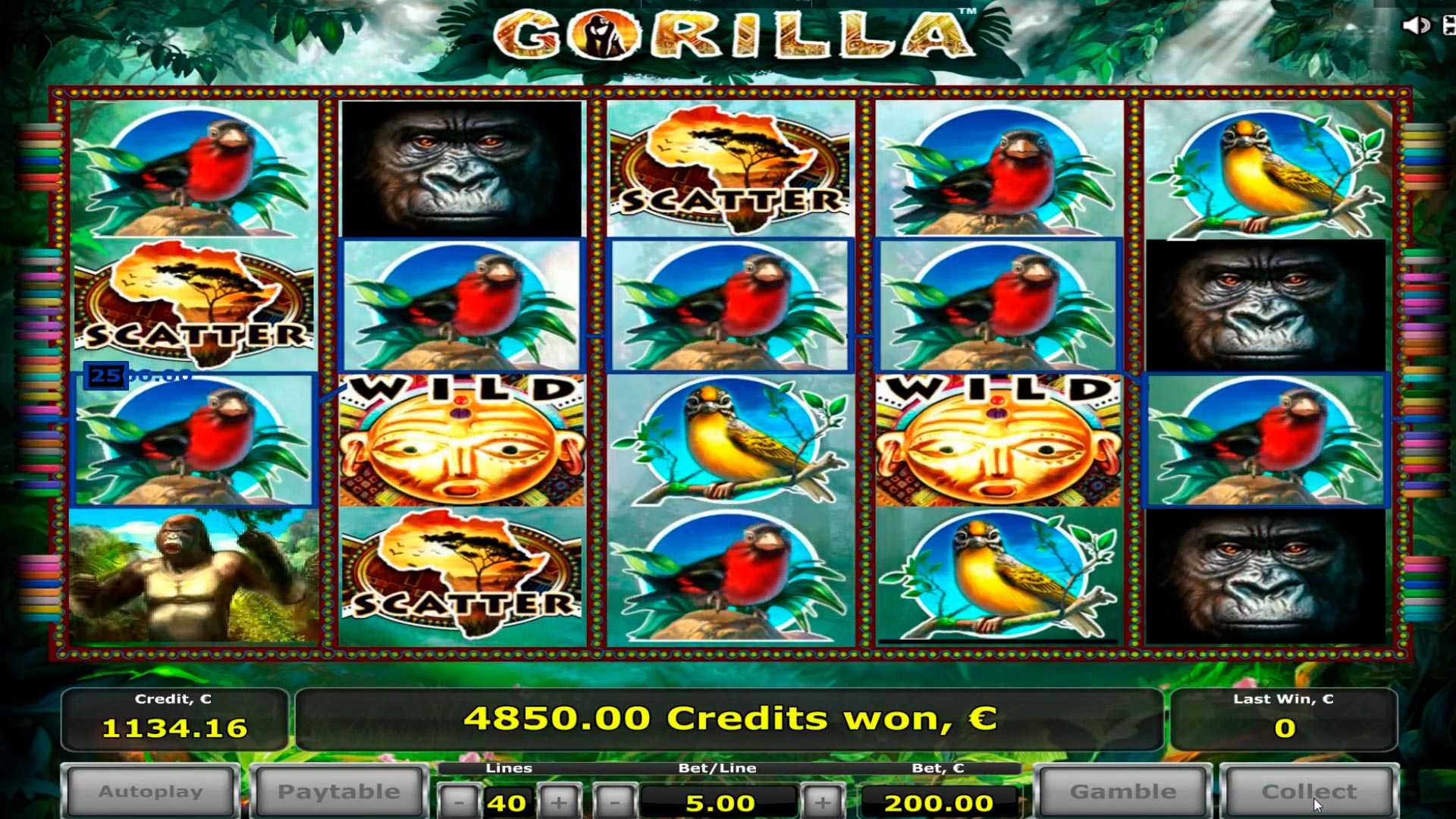 Gorilla kasino slot super hra big win € 75.000