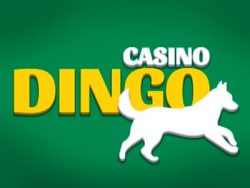 Capture d'écran de Casino Dingo