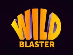 Wild Blaster截图