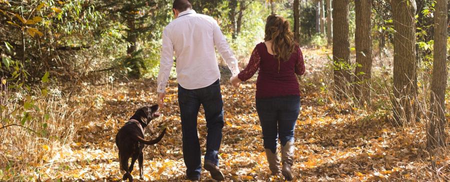 Divórcio - quem fica com o cachorro?
