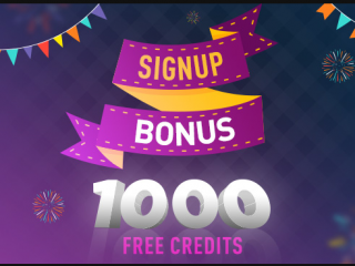 Sign Up Casino Bonus Information