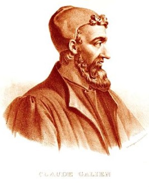 ჯონათან ჰოლმერგგი